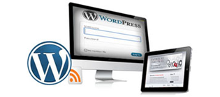 wordpress web and blog development